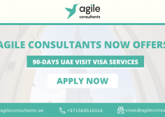https://www.agileconsultants.ae/wp-content/uploads/2020/02/Visas-2-236x168.png