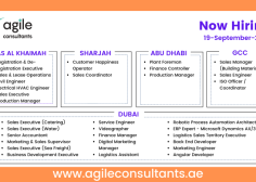 https://www.agileconsultants.ae/wp-content/uploads/2021/09/Copy-of-10-Common-Mistakes-To-Avoid-in-CV-3-236x168.png